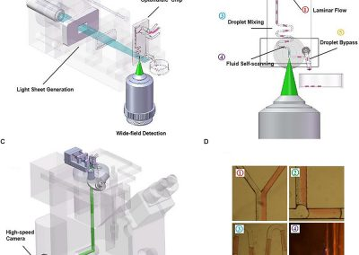 Applications of Light-Sheet Microscopy in Microdevices
